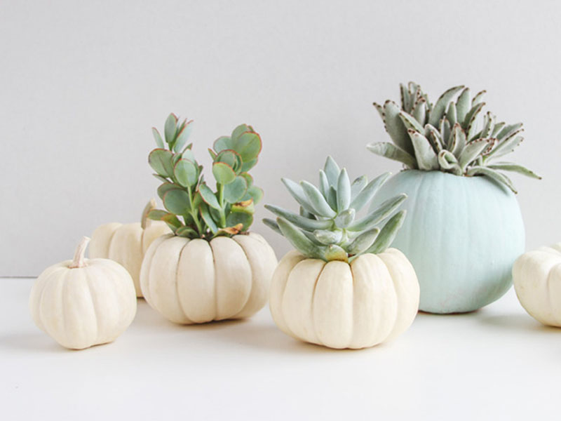 Welcome, Fall: 8 ideas for bringing fall decor into your home fall decor Welcome, Fall: 8 ideas for bringing fall decor into your home fall decor 041016 06b
