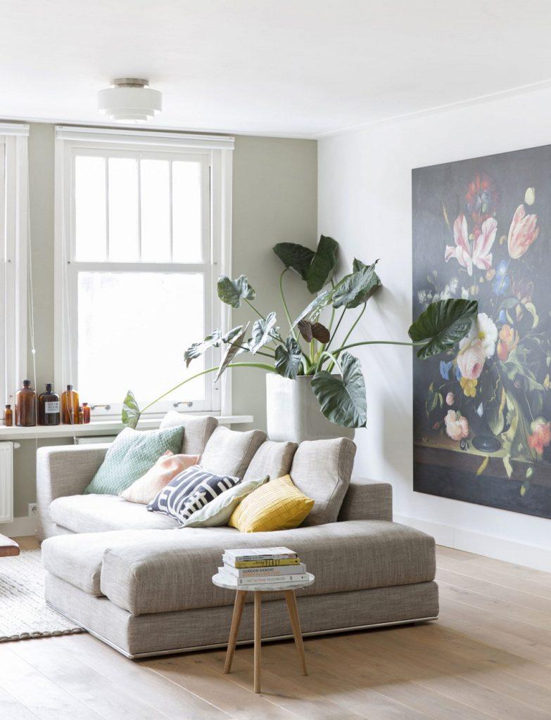 Minimalist Living Room Ideas With Plants Novocom Top