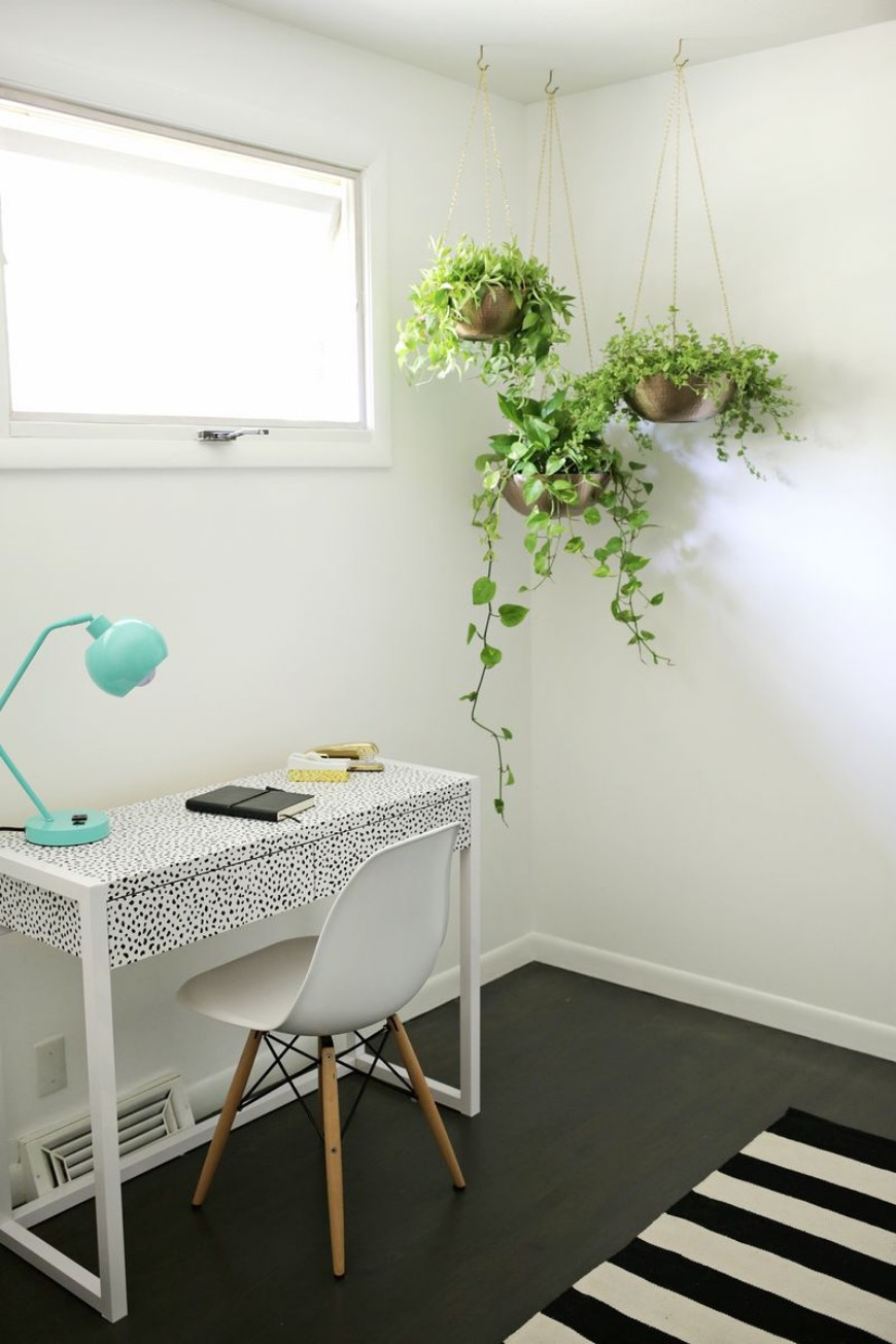 modern home decor How To Include Indoor Vines In Modern Home Decor How To Include Indoor Vines In Modern Home Decor